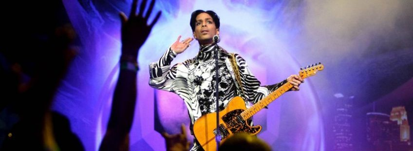 Prince: The Ultimate Brand Experience