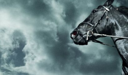 What Are The Top 10 Characteristics of Leading 'Dark Horse' Companies?