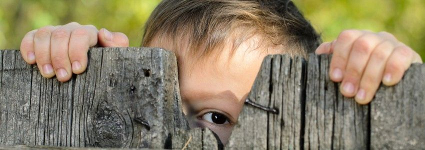 Unbridled Curiosity